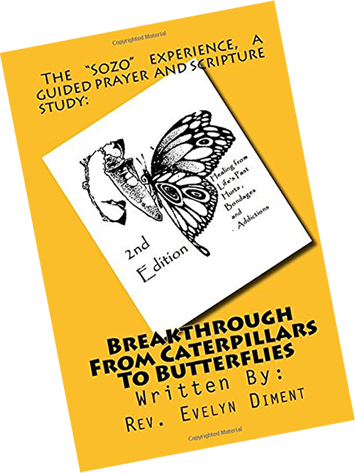 Lively Hope Ministries - Breakthru Book